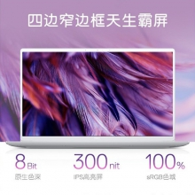 戴尔 Ins 14-7490-R1525S  新品上市 INS7490-R1525S(i5-10210U/8GB DDR3 2133/512G/MX250/2G) 14.1寸 银色