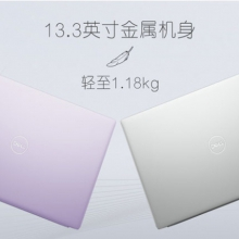 Dell/戴尔 灵越5000 5390-R2525S 八代酷睿i5四核独显MX250 13.3英寸256固态轻薄便携本商务办公笔记本电脑 撞色银色