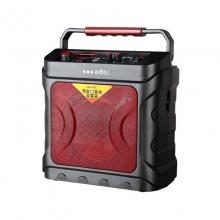 奥迪诗高品质音响DC160户外音响音箱蓝牙、USB、FM收音机、无线话筒、充电式电池